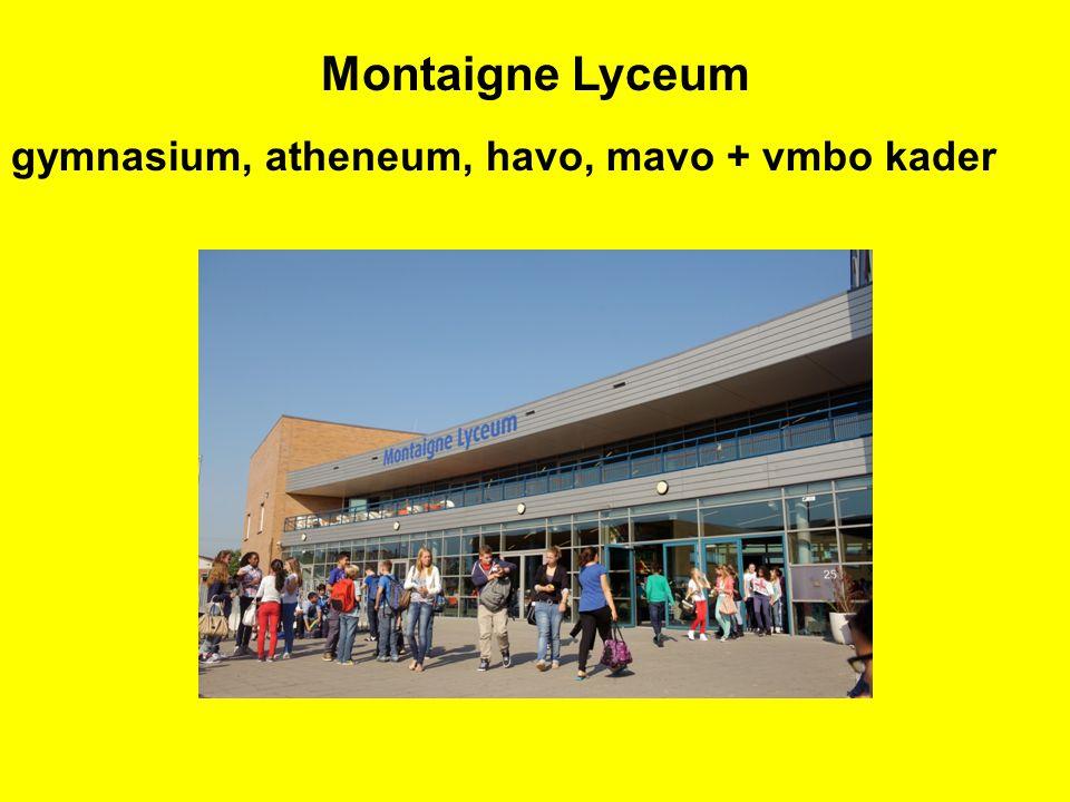 BL 3KL 3GL 3TL 3HAVO-3 VWO-3 gym-ath BL 4KL 4GL 4TL 4HAVO-4 VWO-4 gym-ath HAVO-5 VWO-5 gym-ath VWO-6 gym-ath VWO-2 gym-ath VMBO TL 2 KL2 BL2 KL1 BL 1VMBO TL 1 Wetenschappelijk onderwijs Hoger onderwijs Middelbaar beroepsonderwijsArbeids- markt HAVO 2 HAVO 1VWO 1 BASISONDERWIJS