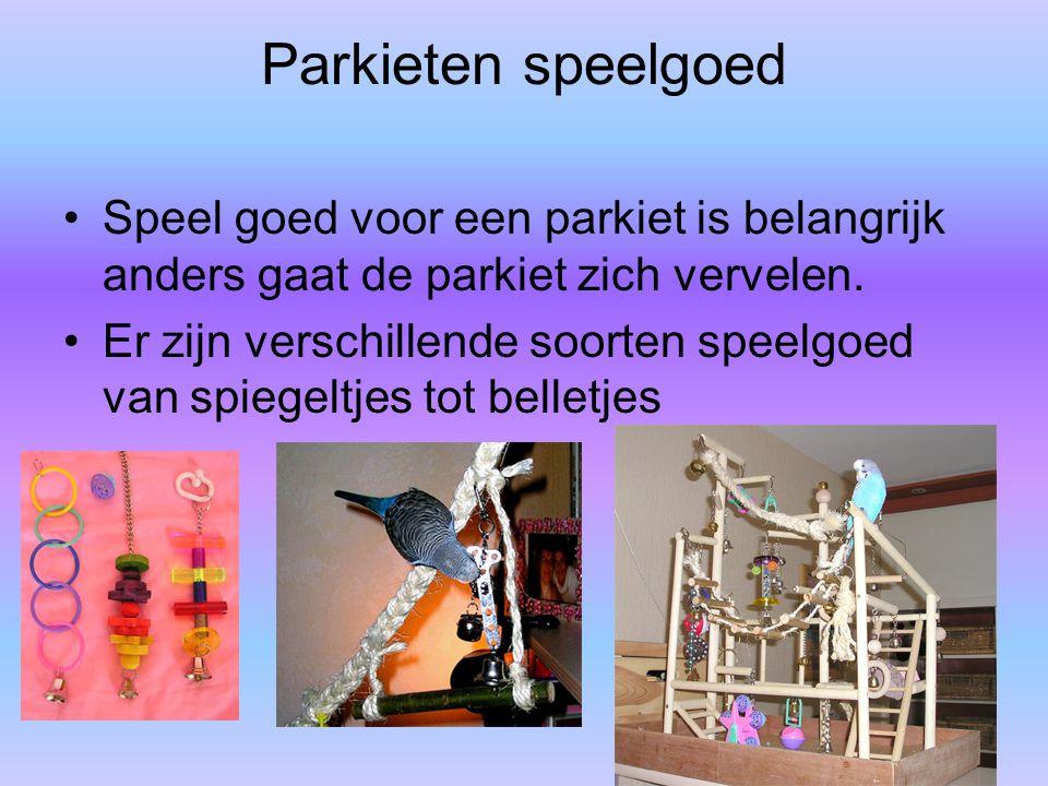 Parkieten speelgoed Speel goed voor een parkiet is belangrijk anders gaat de parkiet zich vervelen.