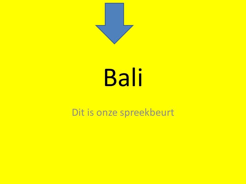 Bali Dit is onze spreekbeurt
