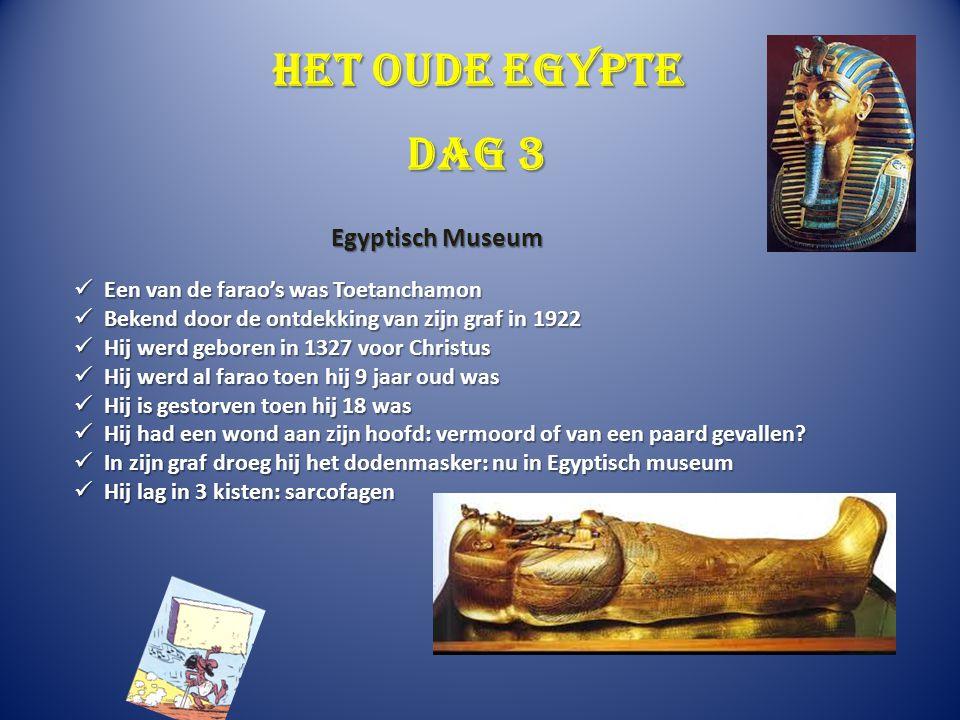 Het oude Egypte In het museum vinden we de mummie van Toetanchamon In het museum vinden we de mummie van Toetanchamon Mummificeren: na de dood hersenen en organen eruit Mummificeren: na de dood hersenen en organen eruit 40 dagen in zout 40 dagen in zout Lichaam inwrijven met olie Lichaam inwrijven met olie In witte doeken In witte doeken Toetanchamon ging als mummie in de graftombe Toetanchamon ging als mummie in de graftombe Graf werd gevonden in Luxor Graf werd gevonden in Luxor Dag 3 Egyptisch museum