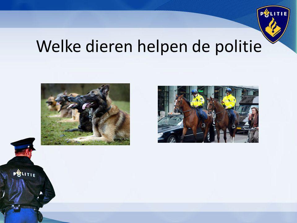 Welke dieren helpen de politie