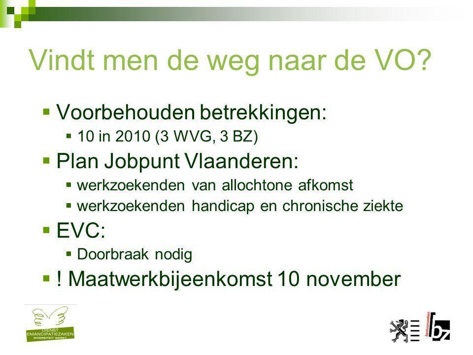Vindt men de weg naar de VO?  Voorbehouden betrekkingen:  10 in 2010 (3 WVG, 3 BZ)  Plan Jobpunt Vlaanderen:  werkzoekenden van allochtone afkomst