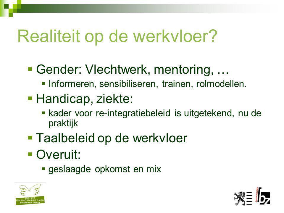 Realiteit op de werkvloer?  Gender: Vlechtwerk, mentoring, …  Informeren, sensibiliseren, trainen, rolmodellen.  Handicap, ziekte:  kader voor re-