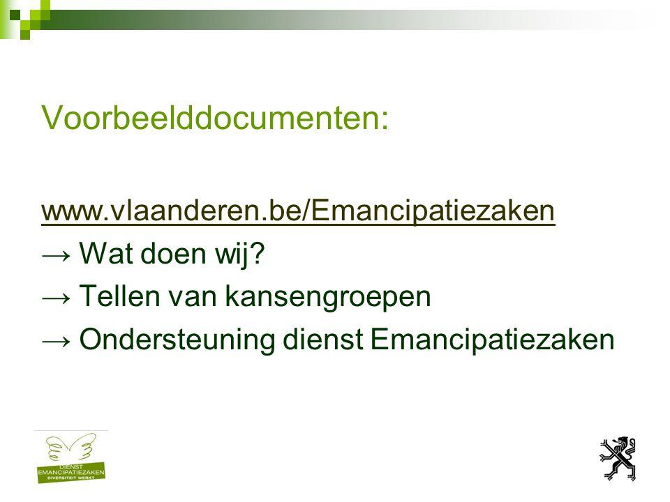 Voorbeelddocumenten: www.vlaanderen.be/Emancipatiezaken → Wat doen wij.
