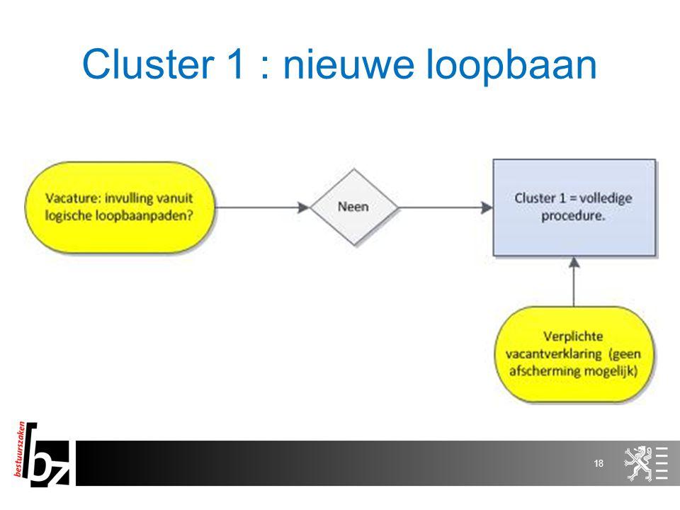 18 Cluster 1 : nieuwe loopbaan