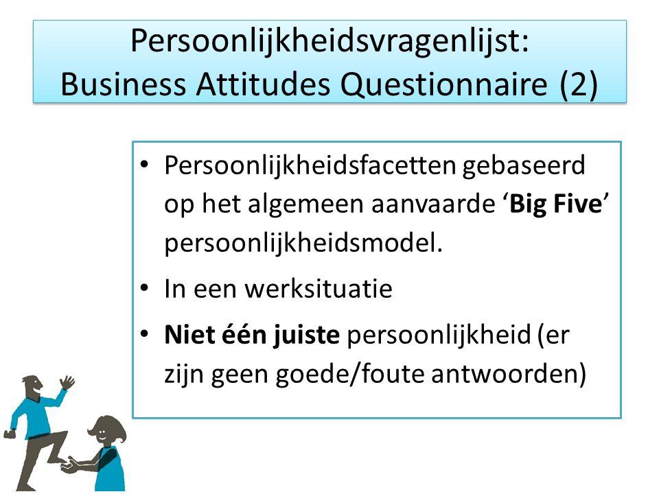 Persoonlijkheidsfacetten gebaseerd op het algemeen aanvaarde 'Big Five' persoonlijkheidsmodel.