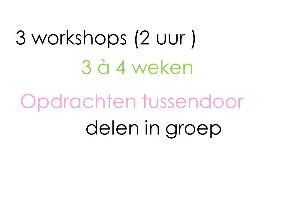 3 workshops (2 uur ) Opdrachten tussendoor 3 à 4 weken delen in groep