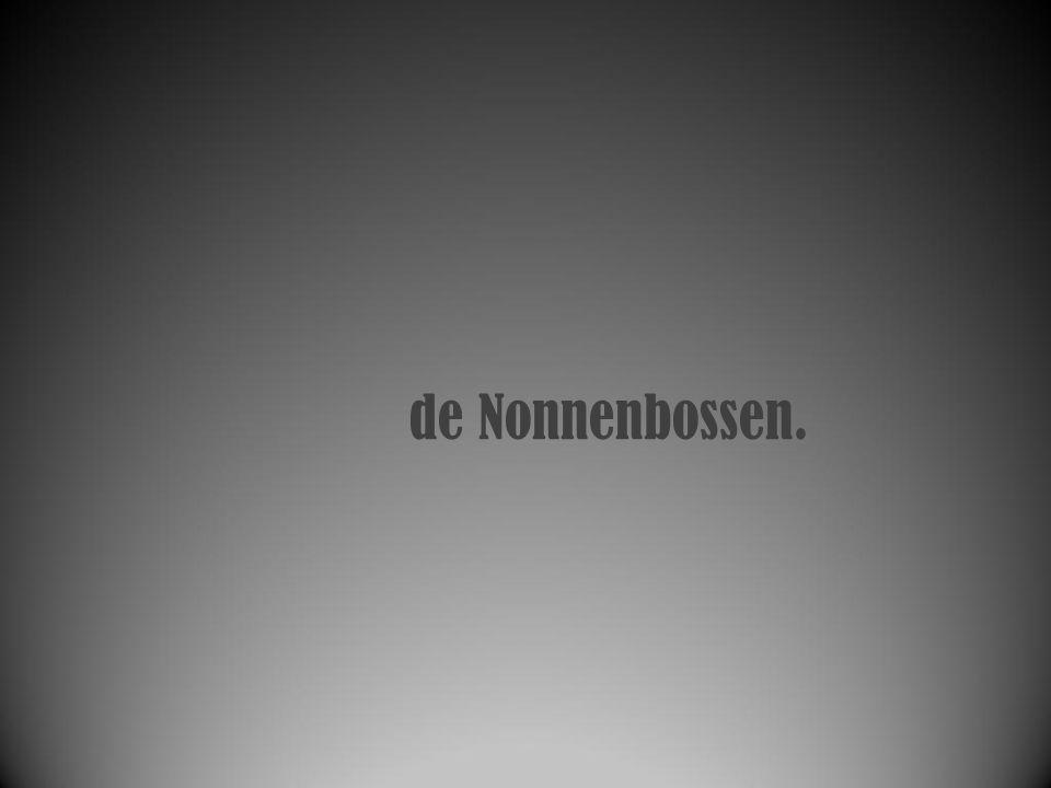 de Nonnenbossen.