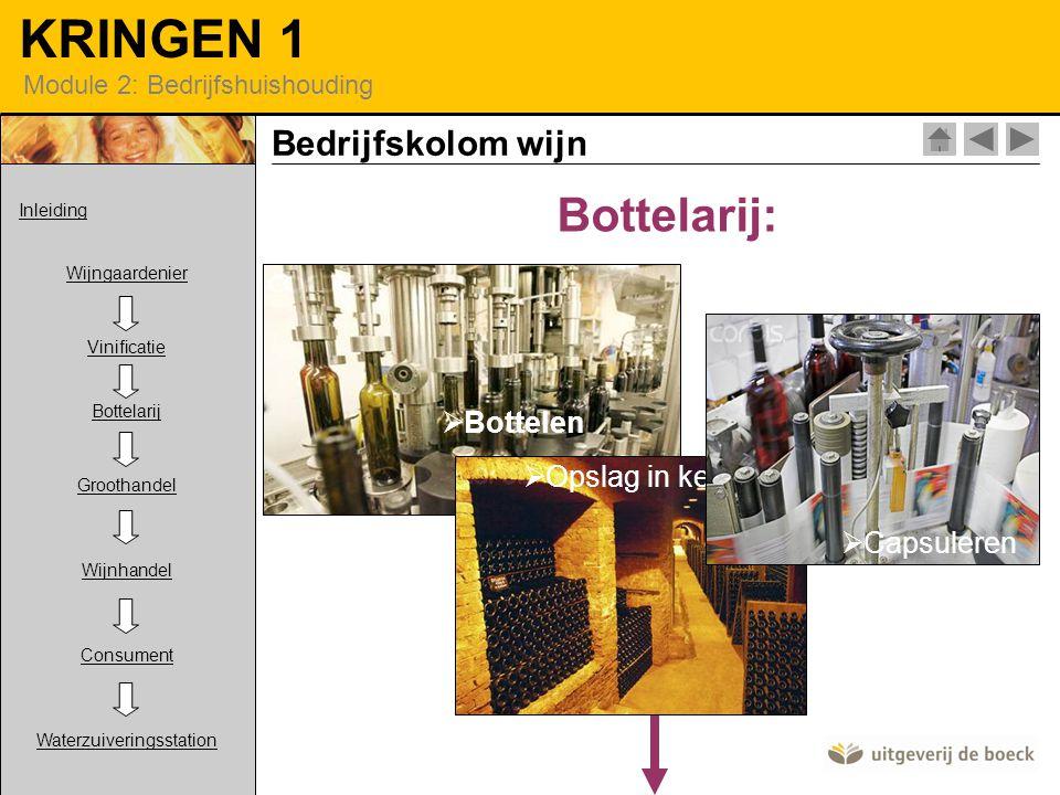 KRINGEN 1 Module 2: Bedrijfshuishouding Bottelarij:  Bottelen  Opslag in kelder  Capsuleren Bedrijfskolom wijn Inleiding Wijngaardenier Vinificatie Bottelarij Groothandel Wijnhandel Consument Waterzuiveringsstation