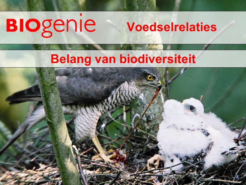 Voedselrelaties Belang van biodiversiteit
