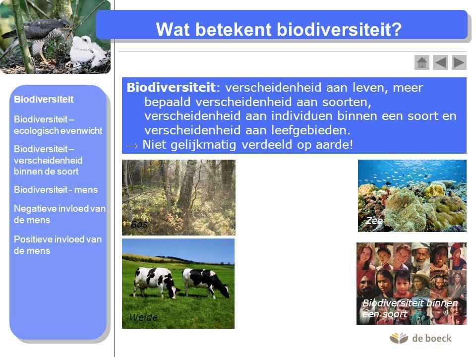 Wat betekent biodiversiteit? Biodiversiteit: verscheidenheid aan leven, meer bepaald verscheidenheid aan soorten, verscheidenheid aan individuen binne