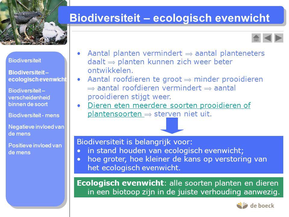 Biodiversiteit – verscheidenheid binnen de soort Grote verscheidenheid aan individuen binnen de soort  Soort kan zich beter aanpassen aan veranderende omstandigheden.