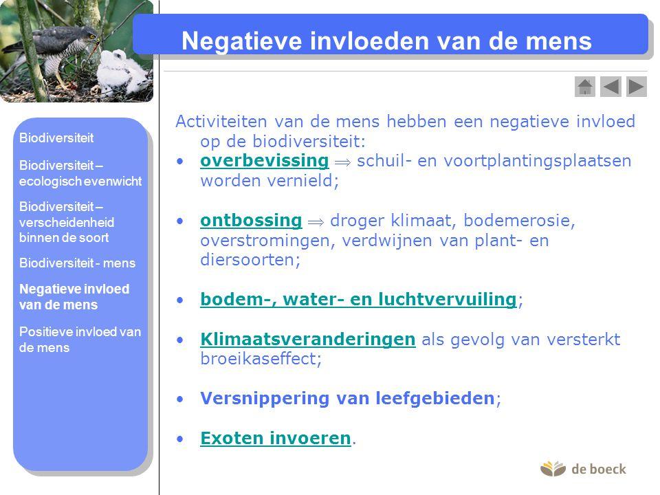 Negatieve invloeden van de mens Activiteiten van de mens hebben een negatieve invloed op de biodiversiteit: overbevissing  schuil- en voortplantingsp