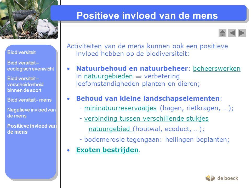 Positieve invloed van de mens Activiteiten van de mens kunnen ook een positieve invloed hebben op de biodiversiteit: Natuurbehoud en natuurbeheer: beh