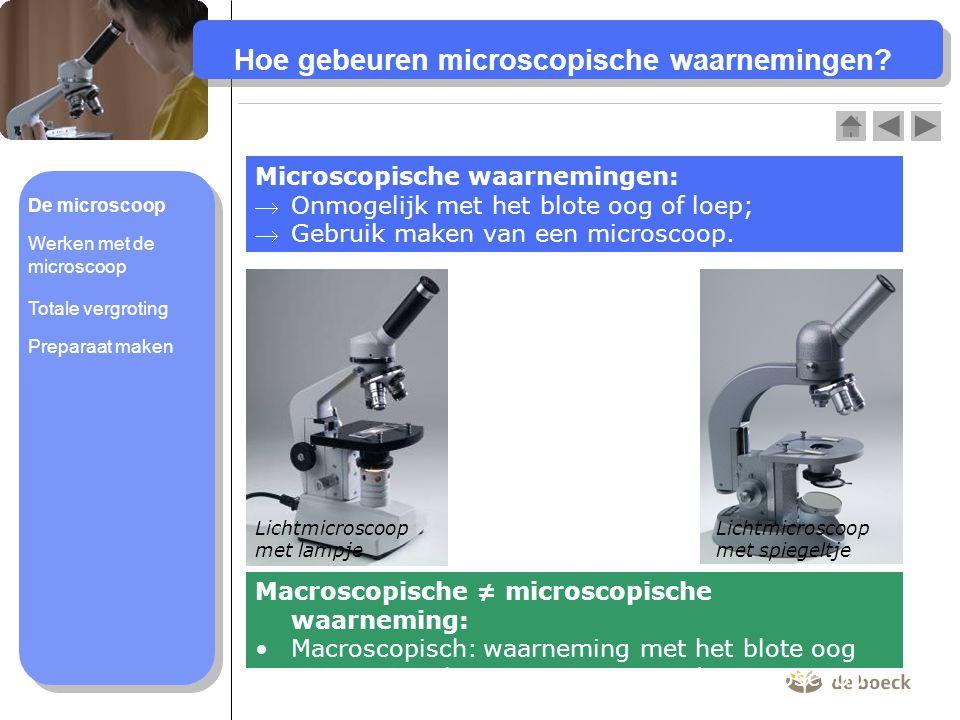 Hoe gebeuren microscopische waarnemingen? Microscopische waarnemingen: Onmogelijk met het blote oog of loep; Gebruik maken van een microscoop. Macro