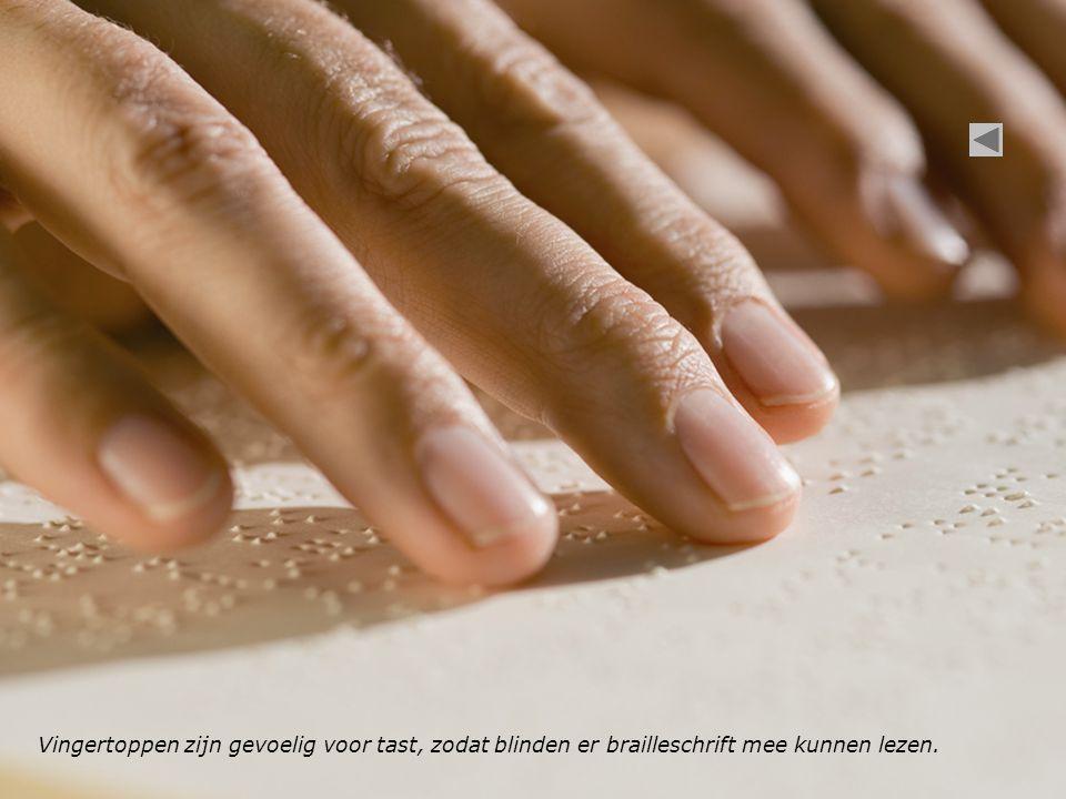 Vingertoppen zijn gevoelig voor tast, zodat blinden er brailleschrift mee kunnen lezen.