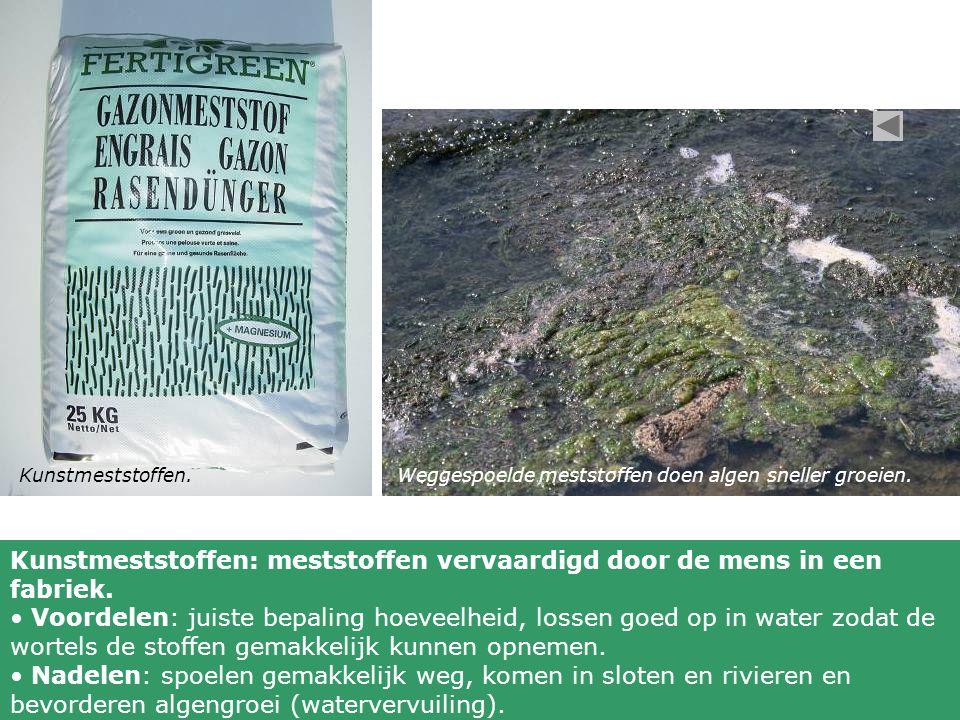Kunstmeststoffen.Weggespoelde meststoffen doen algen sneller groeien. Kunstmeststoffen: meststoffen vervaardigd door de mens in een fabriek. Voordelen