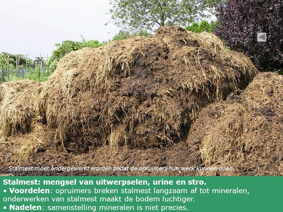 Stalmest moet ondergewerkt worden zodat de opruimers hun werk kunnen doen. Stalmest: mengsel van uitwerpselen, urine en stro. Voordelen: opruimers bre