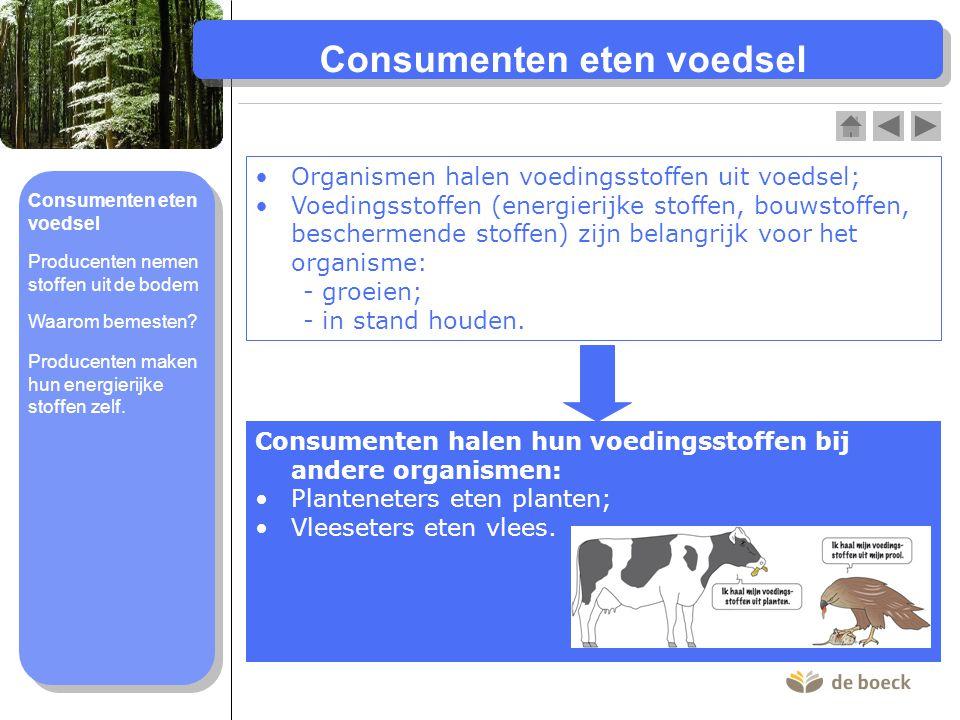 Consumenten eten voedsel Organismen halen voedingsstoffen uit voedsel; Voedingsstoffen (energierijke stoffen, bouwstoffen, beschermende stoffen) zijn belangrijk voor het organisme: - groeien; - in stand houden.