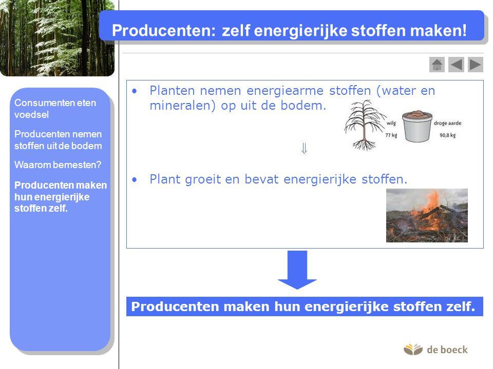 Producenten: zelf energierijke stoffen maken! Producenten maken hun energierijke stoffen zelf. Planten nemen energiearme stoffen (water en mineralen)