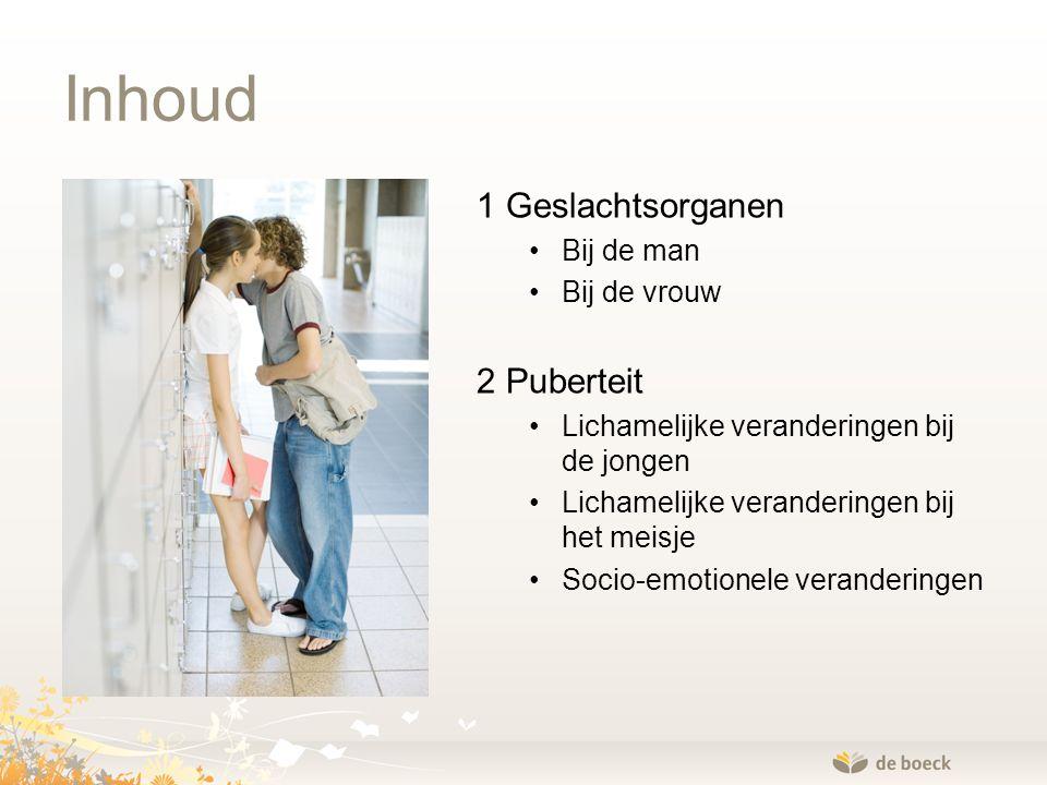 Inhoud 1 Geslachtsorganen Bij de man Bij de vrouw 2 Puberteit Lichamelijke veranderingen bij de jongen Lichamelijke veranderingen bij het meisje Socio