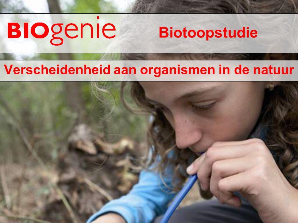 Biotoopstudie Verscheidenheid aan organismen in de natuur