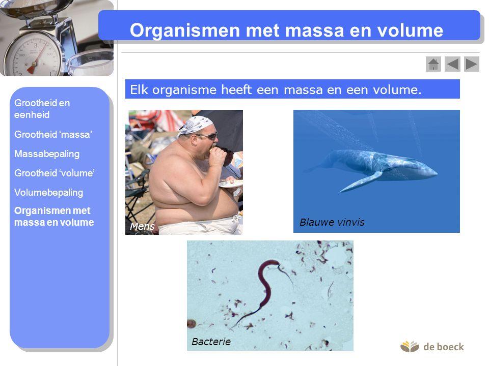 Organismen met massa en volume Elk organisme heeft een massa en een volume. Mens Blauwe vinvis Bacterie Organismen met massa en volume Volumebepaling