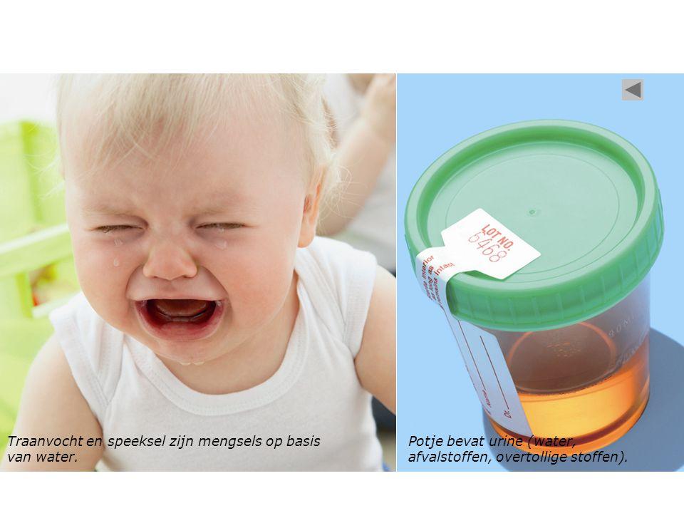 Traanvocht en speeksel zijn mengsels op basis van water. Potje bevat urine (water, afvalstoffen, overtollige stoffen).