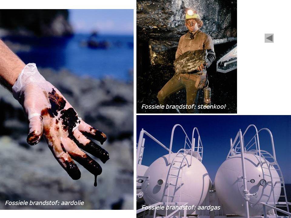 Fossiele brandstof: steenkool Fossiele brandstof: aardolie Fossiele brandstof: aardgas
