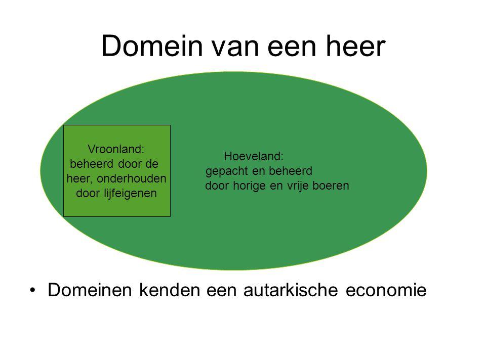 Domein van een heer Domeinen kenden een autarkische economie Hoeveland: gepacht en beheerd door horige en vrije boeren Vroonland: beheerd door de heer