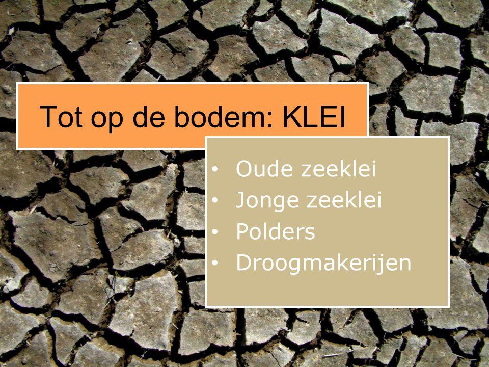 Tot op de bodem Zand en grind Fluviaa l Heel NL Vooral Zuid-NL Keileem Stuwwallen Sandrs Zwerfkeien Zand en grind Glaciaal Fluviaal Ten noorden H.U.N.