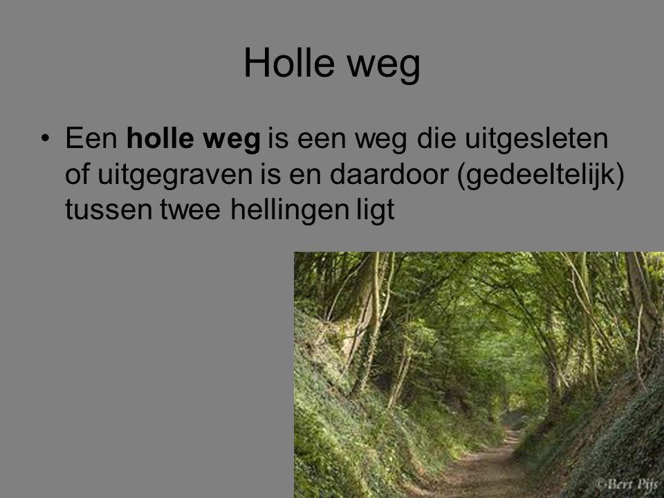 Holle weg Een holle weg is een weg die uitgesleten of uitgegraven is en daardoor (gedeeltelijk) tussen twee hellingen ligt