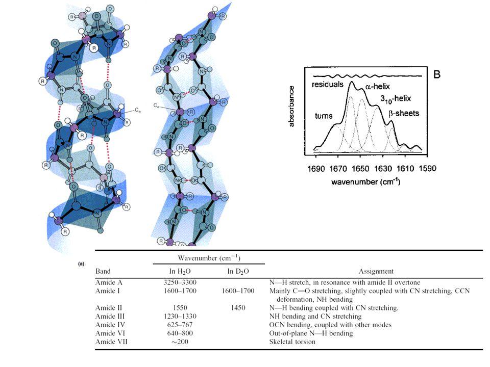 Protein unfolding 250 -> T -> 360K