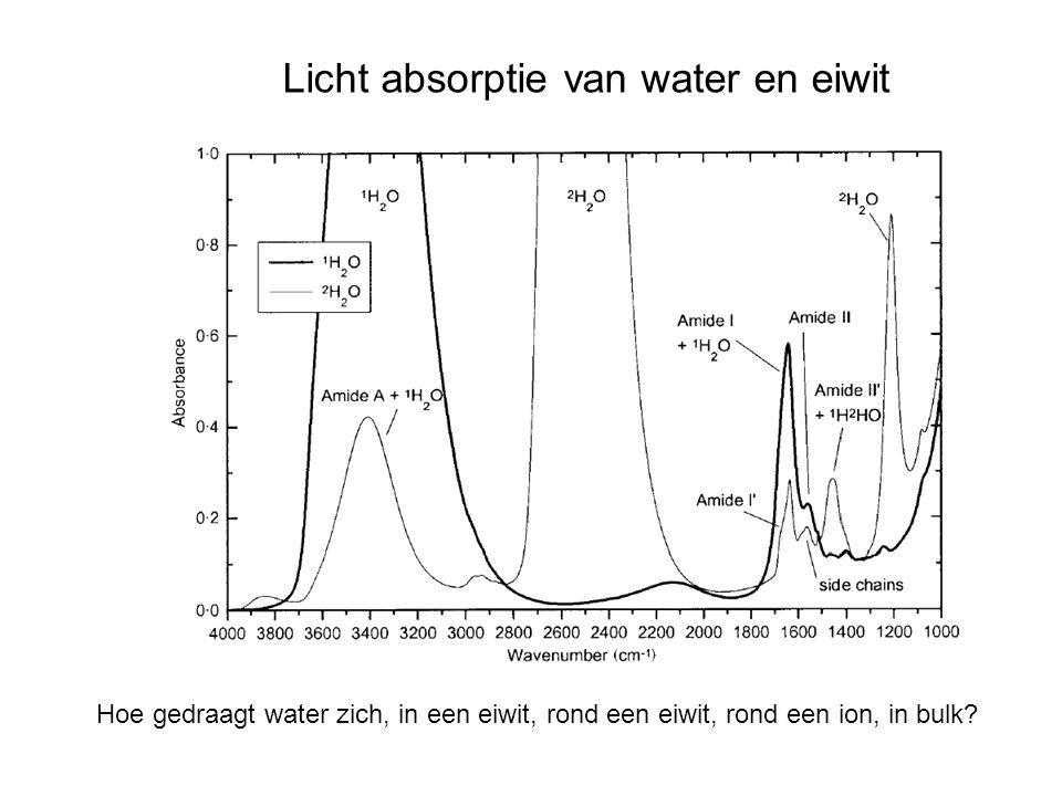 Licht absorptie van water en eiwit Hoe gedraagt water zich, in een eiwit, rond een eiwit, rond een ion, in bulk