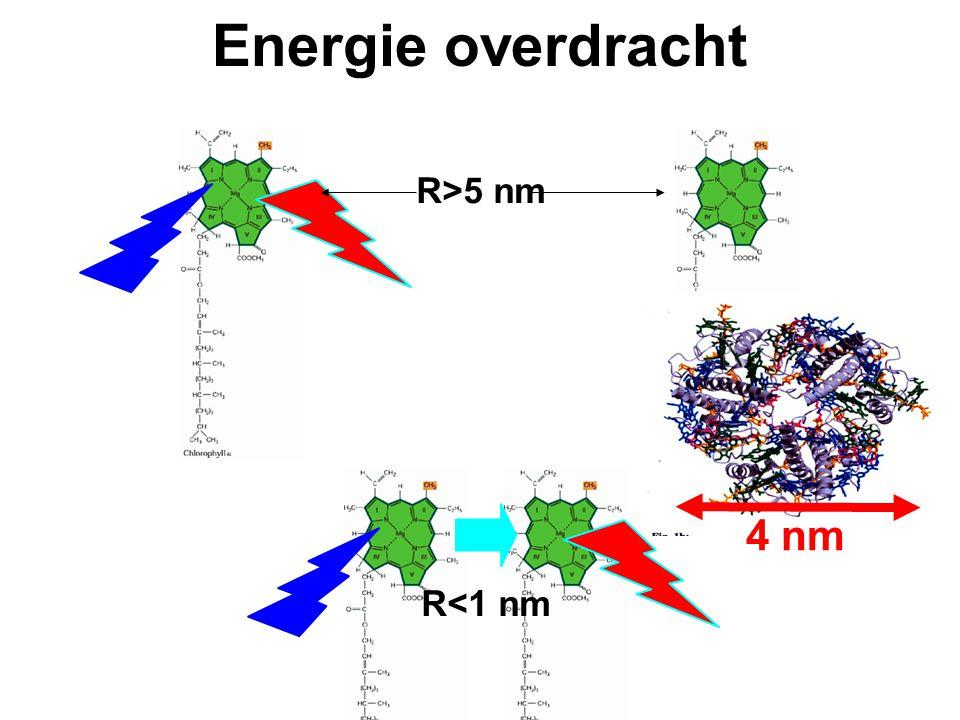 Energie overdracht R>5 nm R<1 nm 4 nm