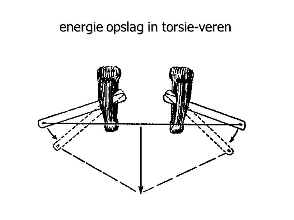 energie opslag in torsie-veren