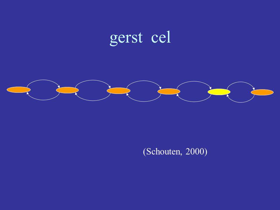 (Schouten, 2000) gerst cel