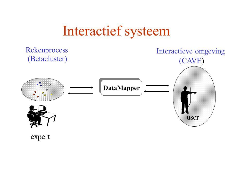 Interactief systeem Rekenprocess Interactieve omgeving DataMapper (Betacluster) (CAVE) expert user