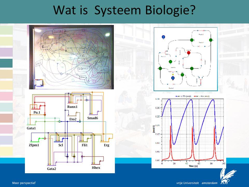 Wat is Systeem Biologie?