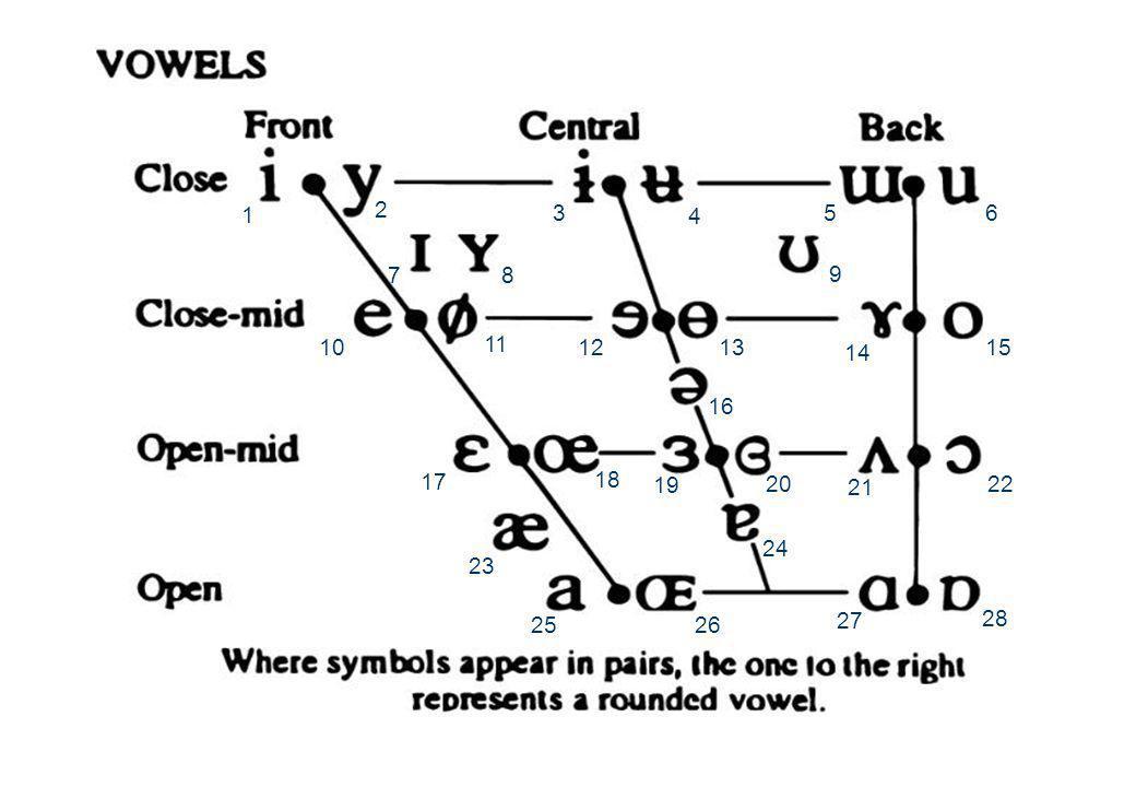 7 jun 2012 Klinkerarticulatie12 DE IPA KLINKER-KAART  De International Phonetics Association stelt het fonetisch alfabet vast  De IPA klinkerkaart i