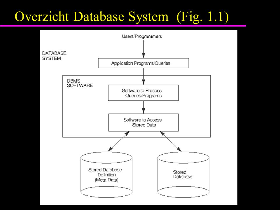 Overzicht Database System (Fig. 1.1)