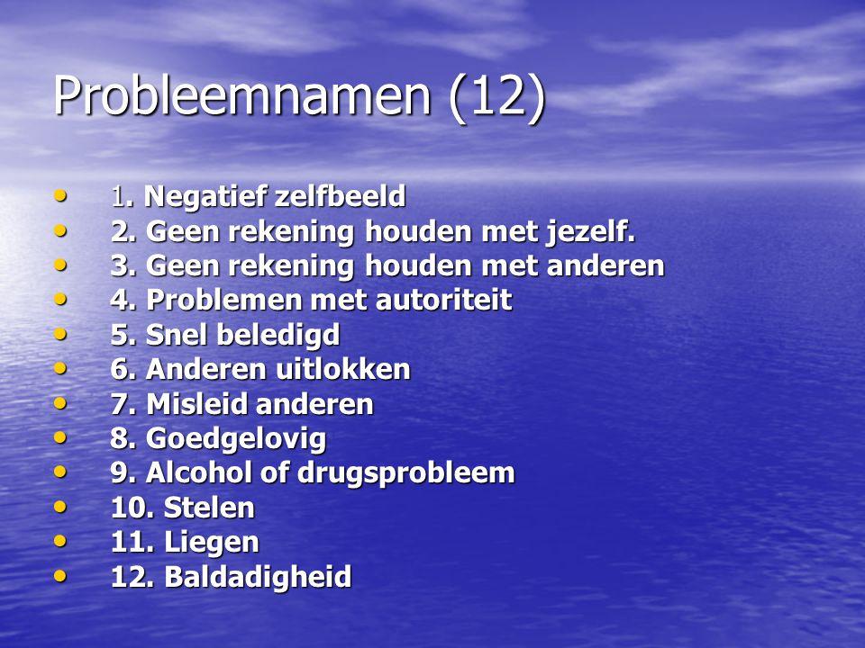 Probleemnamen (12) 1. Negatief zelfbeeld 1. Negatief zelfbeeld 2. Geen rekening houden met jezelf. 2. Geen rekening houden met jezelf. 3. Geen rekenin