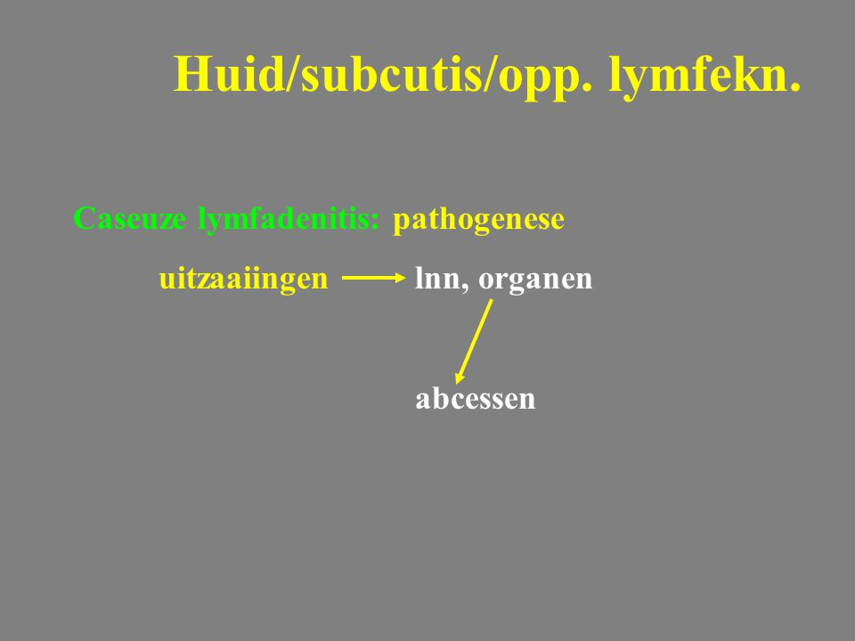 Caseuze lymfadenitis: pathogenese uitzaaiingenlnn, organen abcessen Huid/subcutis/opp. lymfekn.