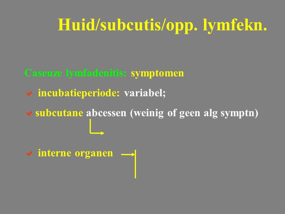 Caseuze lymfadenitis: symptomen  incubatieperiode: variabel;  subcutane abcessen (weinig of geen alg symptn)  interne organen Huid/subcutis/opp. ly