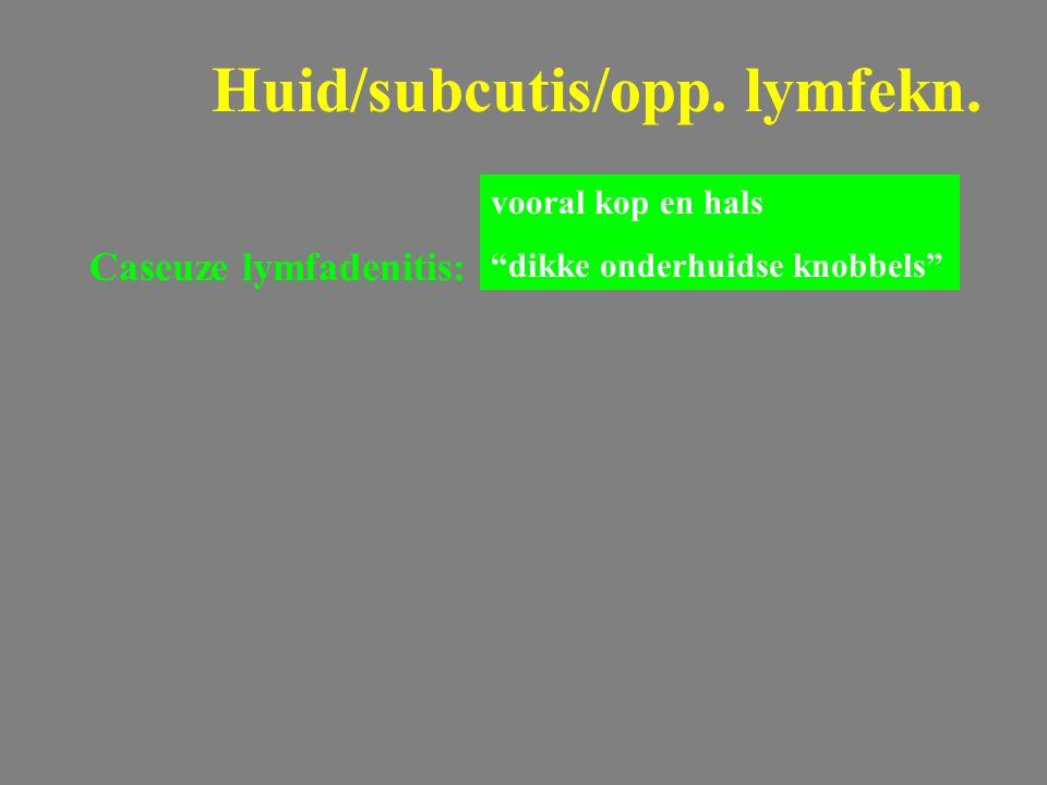 """Caseuze lymfadenitis: GEIT Huid/subcutis/opp. lymfekn. vooral kop en hals """"dikke onderhuidse knobbels"""""""
