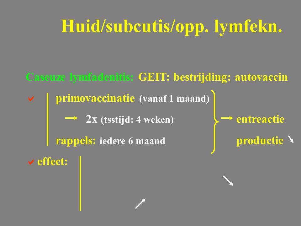 Caseuze lymfadenitis: GEIT: bestrijding: autovaccin  primovaccinatie (vanaf 1 maand) 2x (tsstijd: 4 weken) entreactie rappels: iedere 6 maand product