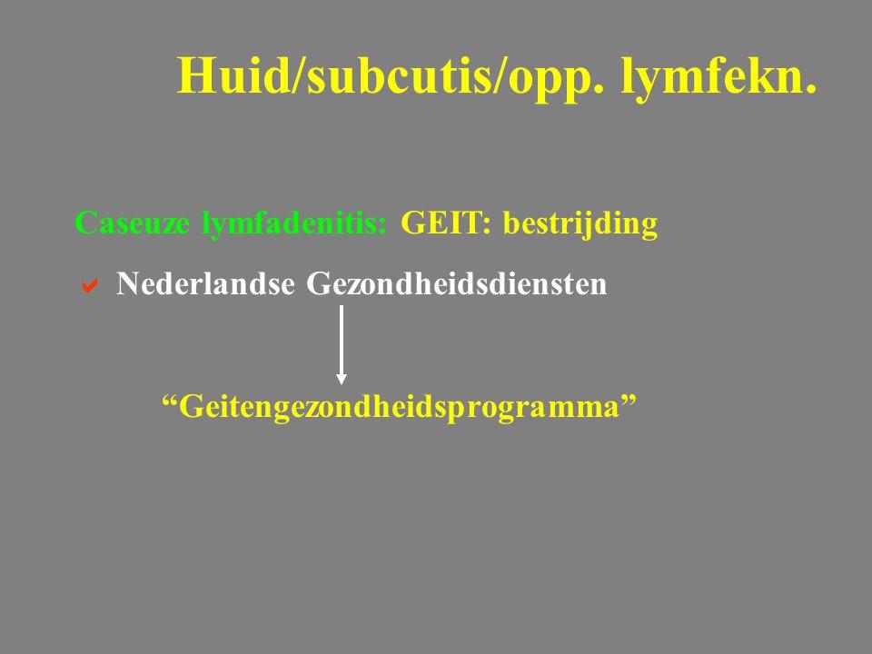 """Caseuze lymfadenitis: GEIT: bestrijding  Nederlandse Gezondheidsdiensten """"Geitengezondheidsprogramma"""" Huid/subcutis/opp. lymfekn."""