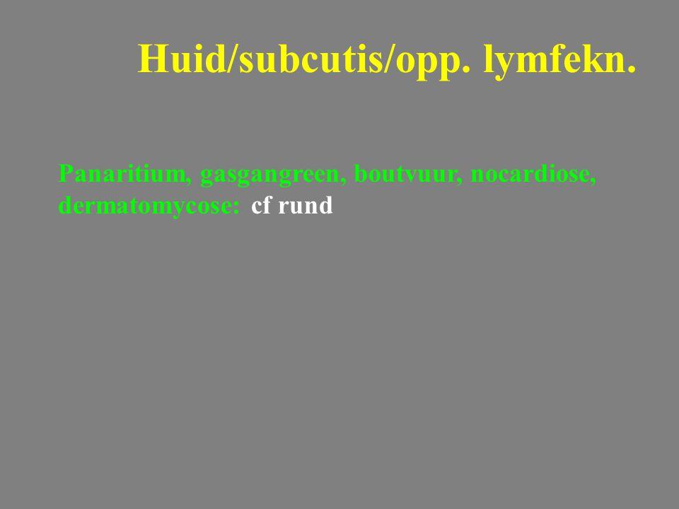 Panaritium, gasgangreen, boutvuur, nocardiose, dermatomycose: cf rund Huid/subcutis/opp. lymfekn.
