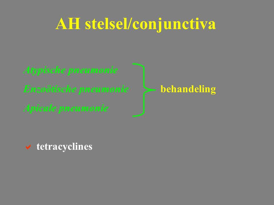Atypische pneumonie Enzoötische pneumoniebehandeling Apicale pneumonie  tetracyclines AH stelsel/conjunctiva