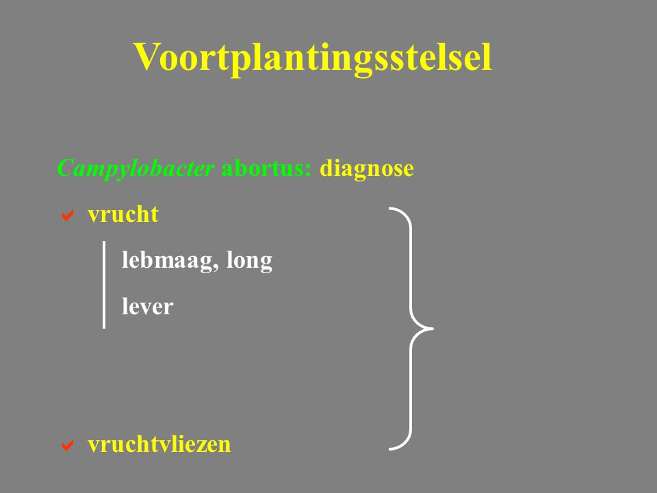 Campylobacter abortus: diagnose  vrucht lebmaag, long lever  vruchtvliezen Voortplantingsstelsel